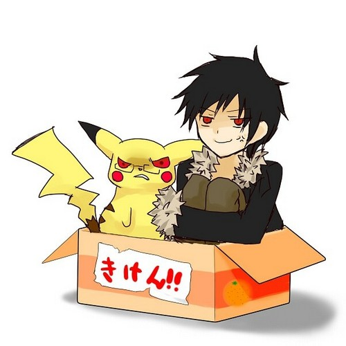 Izaya and Pikachu in a box
