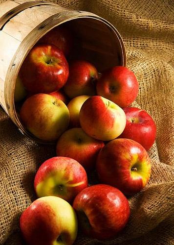 Juicy Red 사과, 애플