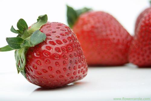 Juicy Red 草莓