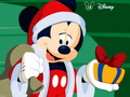 Mickey Mouse - mickey-mouse photo