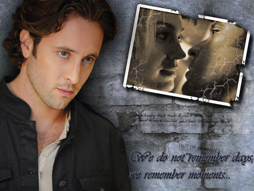 Alex O'Loughlin wallpaper with a sign entitled Moonlight Memories