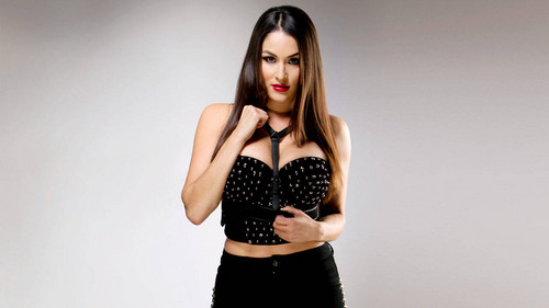 WWE 바탕화면 possibly containing bare legs, hosiery, and tights titled Nikki Bella