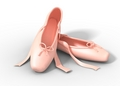 rose Ballet Shoes