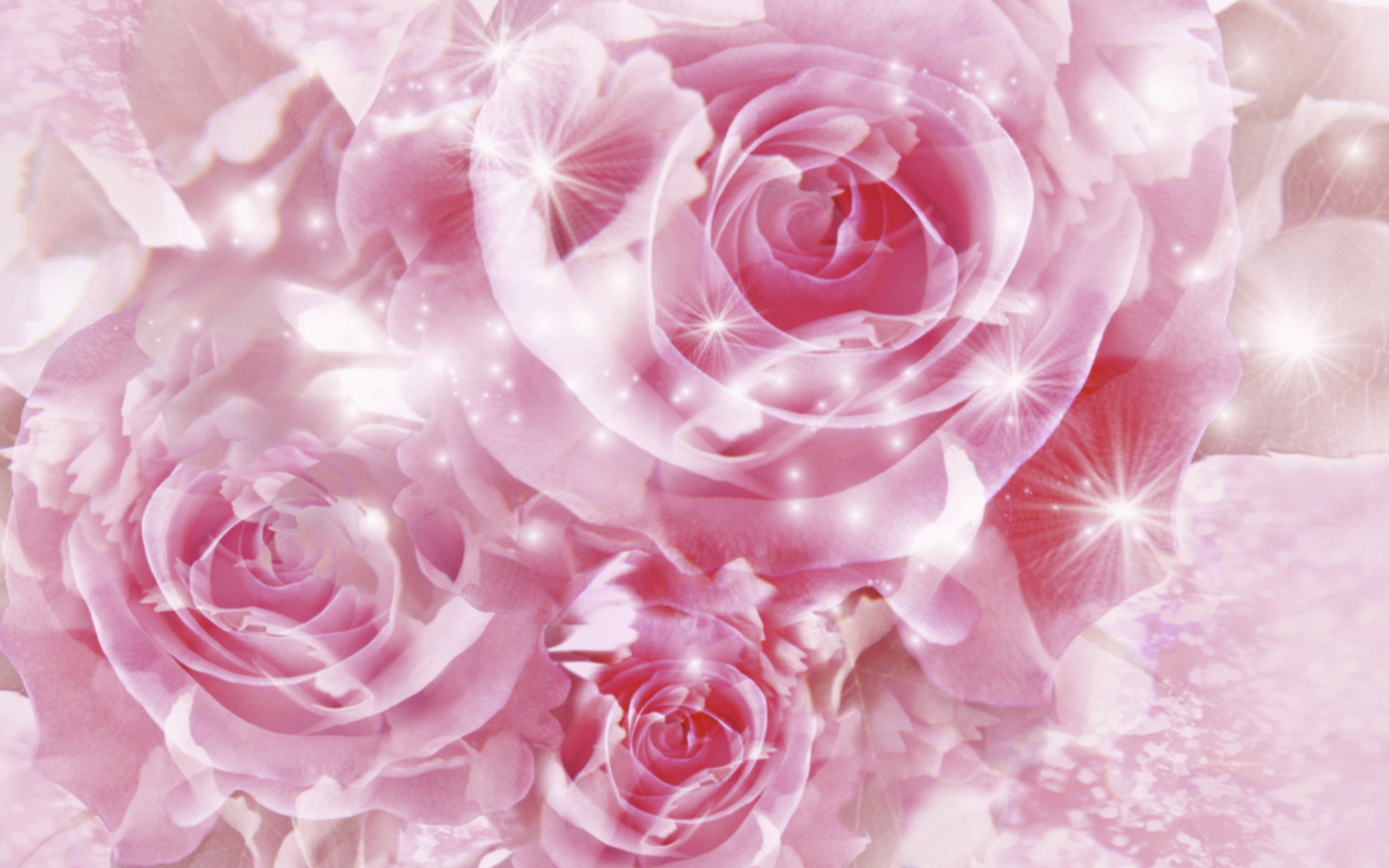Pretty Pink Roses Wallpaper - Pink (Color) Photo (34590746 ...