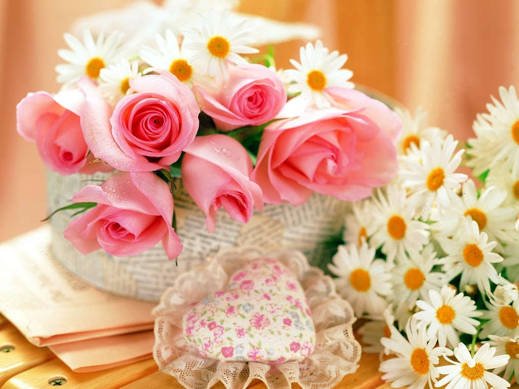 Pretty 粉, 粉色 玫瑰 壁纸