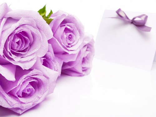 Purple Rose karatasi la kupamba ukuta
