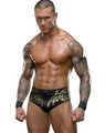 Randy Orton - wwe photo