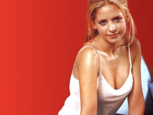 Sarah Michelle Gellar wallpaper probably containing attractiveness, a bustier, and a portrait titled Sarah Michelle Gellar