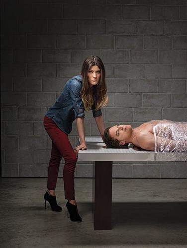 Season 8 Promo Poster