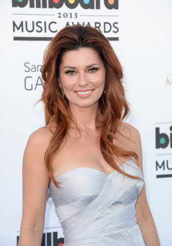 shania twain fondo de pantalla possibly containing a cena dress, a cóctel, coctel dress, and a strapless titled Shania Twain (2013)