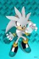 Silver  - silver-the-hedgehog photo