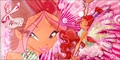 Sirenix ~ Wallpapers - the-winx-club fan art
