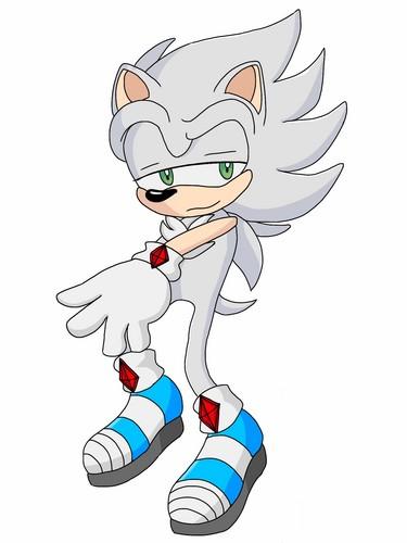 Sojy The Hedgehog.(Request)