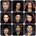 The Cullens  - the-cullens-coven photo