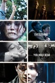 The Hunger Games/Harry Potter - harry-potter fan art