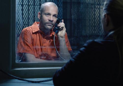 The Killing - Season 3 - Cast bức ảnh