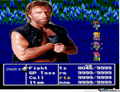 The undefeatable boss battle-Chuck Norris - final-fantasy photo