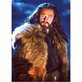 Thorin Oakenshield - richard-armitage photo