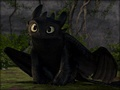 Toothless and Hiccup - how-to-train-your-dragon photo