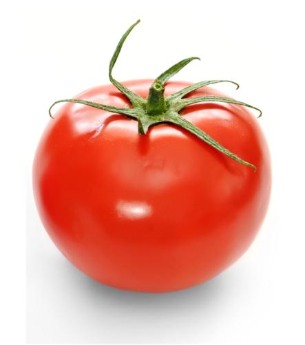 Vermillion cà chua