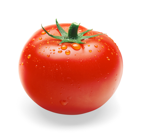 Vermillion 토마토