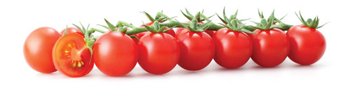Vermillion ٹماٹر