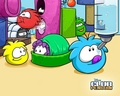 Waddle around!XD!