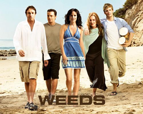 Weeds wallpaper called Weeds