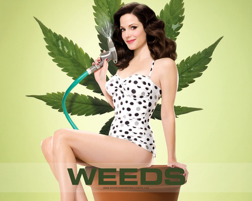 Weeds wallpaper probably with a leotard and tights titled Weeds