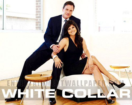 White Collar wallpaper with a well dressed person entitled White Collar