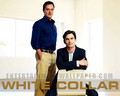White Collar - white-collar wallpaper