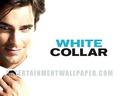 White kraag