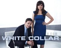 White Collar - white-collar wallpaper