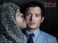 Wilfred - wilfred wallpaper
