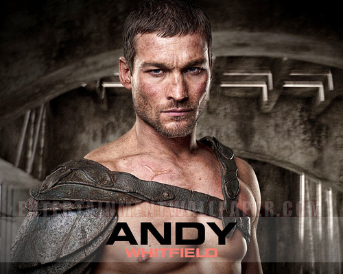 andy whitfield images andy whitfield HD wallpaper and background ...