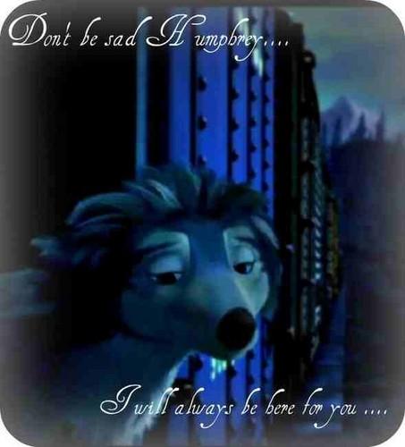dont be sad humphrey
