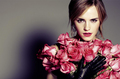 emma - emma-watson photo