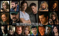 for my supernatural♥ - tejas123 photo
