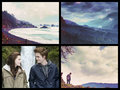 forks - twilight-movie fan art