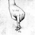 life - beautiful-pictures photo