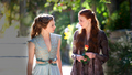 margaery and sansa