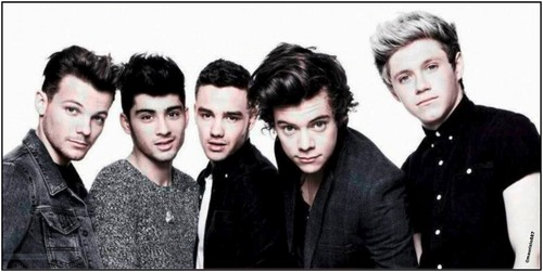 one direction where we are 2013