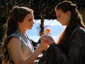 sansa and margaery - house-stark photo