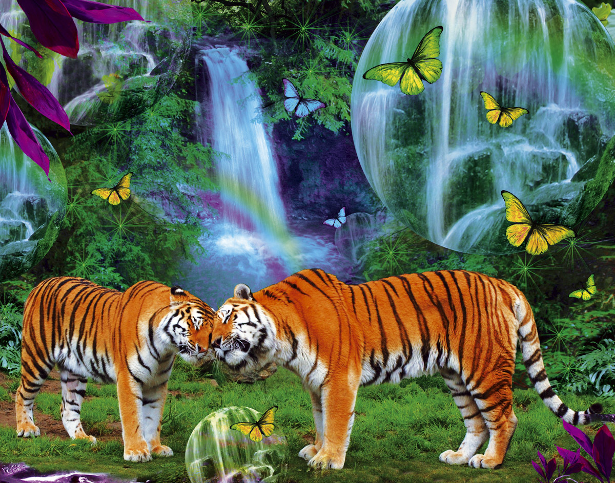 tigerclan images tiger hd wallpaper and background photos (34588107)