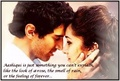 Cool dud Adi  - aashiqui-2 photo