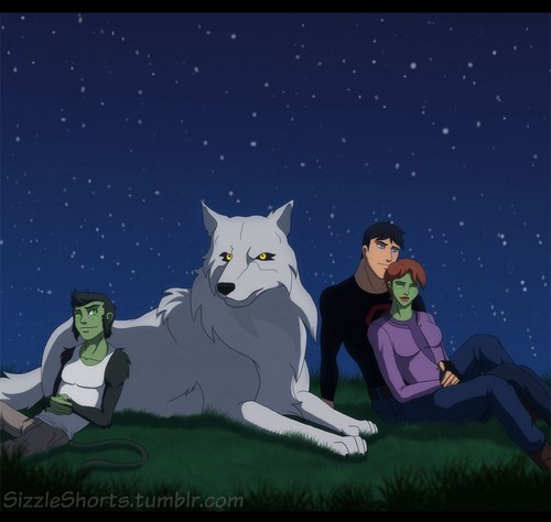 Justicia Joven fondo de pantalla titled (Fanmade) SuperMartian with Beast Boy and lobo under the stars