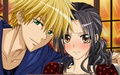 ♥¸.•*´¯)*•usui x misaki.¸.•´¯`♡ - anime-couples wallpaper