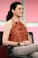 2007 Summer TCA Tour  - julianna-margulies photo