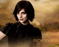 Alice Cullen! - alice-cullen wallpaper