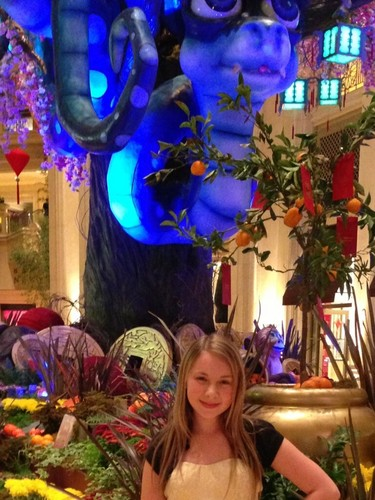 Anna in Vegas 2013